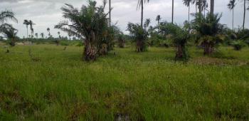 Hectares of Land with Gazzette, Okun Folu, Folu Ise, Ibeju Lekki, Lagos, Mixed-use Land for Sale