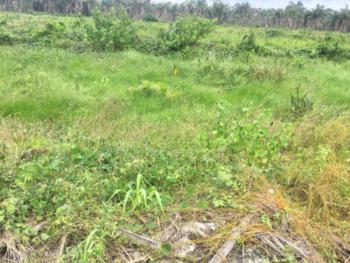Dry Plot with Governors Consent, Ajayi Apata Estate, Sangotedo, Ajah, Lagos, Land for Sale