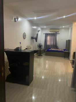 Neat and Spacious Self Contained, Ikate, Lekki, Lagos, House for Rent