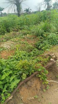 Complete Dry Land for Mixed Use Purpose, Epe, Lagos, Mixed-use Land for Sale