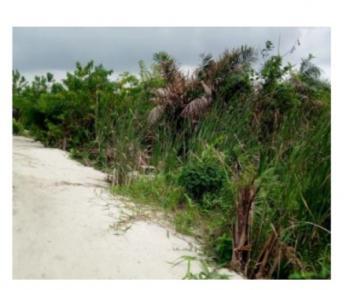 3 Plots of Land Not Far From Express, Fidiso Estate, Before Abijo, Abijo, Lekki, Lagos, Residential Land for Sale