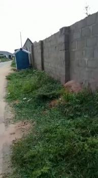 100 X 100 on a Tarred Road, Off Ibusa Road, Asaba, Oshimili South, Delta, Mixed-use Land for Sale