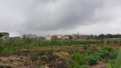 Well Located Dry Land, Anthony, Maryland, Lagos, Residential Land for Sale
