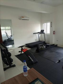Luxury Mini Flat, Dideolu Estate, Victoria Island (vi), Lagos, Mini Flat for Rent