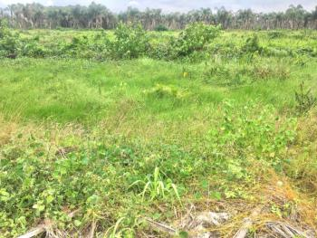 Two Plots Away From The Express with C of O, Opposite Atican Beachview Estate, Okun-ajah, Ajah, Lagos, Land for Sale