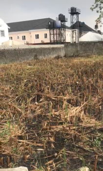 1712sqm Land Available in a Secured Estate and Developed Area, Oba Musa / Tunde Adeleye, Agungi, Lekki, Lagos, Residential Land for Sale