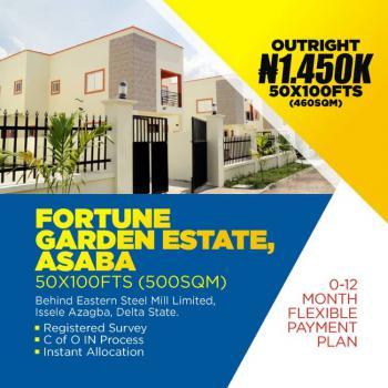 Cheap C of O Land, Issele Azagba/otulu Road Along Benin, Asaba, Delta, Residential Land for Sale
