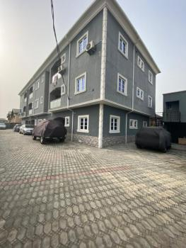 Detailed 2 Bedroom Flats in a Gated Estate, Salvation Estate, Langbasa, Ajah, Lagos, Flat / Apartment for Sale