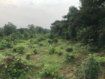 10 Plots of Land in an Upcoming Developing Area, Owerri North, Imo, Mixed-use Land for Sale