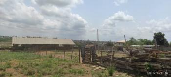 Functioning Poultry Farm on 4 Hectares of Land., Ikorodu, Lagos, Factory for Sale