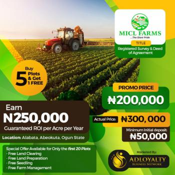Very Affordable Farming Plots, Alabata, Abeokuta South, Ogun, Commercial Property for Sale