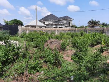 a Well Fenced 2 Plots of Land of About 650sqm Each, General Paint, Ajah, Lagos, Residential Land for Sale