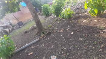 Land, College Road, Ogba, Ikeja, Lagos, Residential Land for Sale