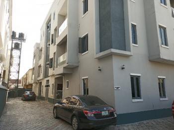 Spacious 3 Bedrooms Apartment with Bq, Ikate, Lekki, Lagos, Flat / Apartment for Rent