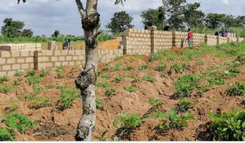 Plots of Land Available at Affordable Price, Umeri, Onitsha, Anambra, Mixed-use Land for Sale