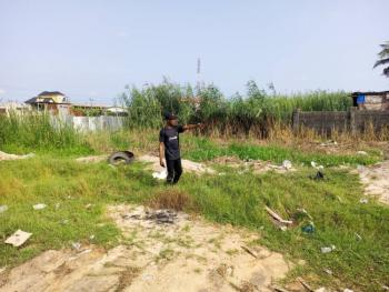 100% Dry Land for Farming, Simplicity Farm  Alaro City, in Lekki Free Trade Zone, Epe, Lagos, Commercial Land for Sale