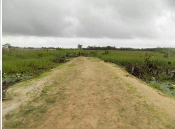 Prime Extensive Dry Land Measuring 20.105 Acres, 7th Avenue, Festac, Amuwo Odofin, Lagos, Residential Land for Sale