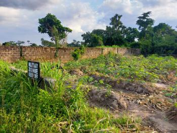 a Plot of Land, Miracle Junction Ifite, Awka, Anambra, Residential Land for Sale
