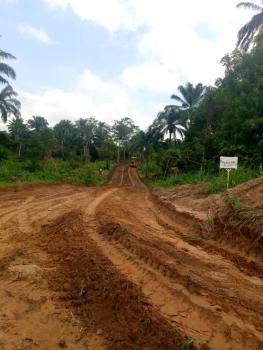 350sqm Private Plot in a Resort, Along Ojerinde Road, Iware, Afijio Lga, Ibadan, Oyo, Residential Land for Sale