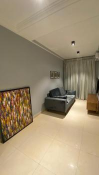 Fully Serviced 2 Bedrooms Apartment, Ikate, Ikate Elegushi, Lekki, Lagos, Flat / Apartment for Rent