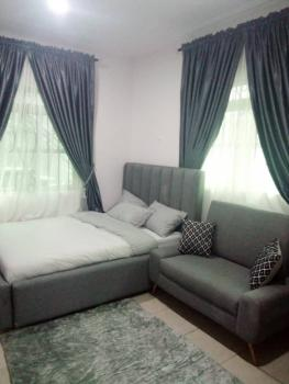 a Comfy and Furnished Studio Apartment Available, Phase 1, Lekki, Lagos, Flat / Apartment for Rent