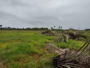 Most Affordable Land in Ibeju Lekki, Less Than 45mins From Lekki Free Trade Zone., Ibeju Lekki, Lagos, Residential Land for Sale
