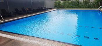 Glamorous 3 Bedroom Apartment, Off Adeola Odeku, Victoria Island (vi), Lagos, Flat / Apartment for Rent