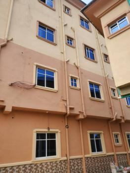 Nice and Newly Built 2 Bedrooms Flat, Off Adetola, Aguda, Surulere, Lagos, Flat / Apartment for Rent