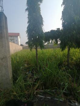 Full Plot of Land Facing Express, Sangotedo, Opposite Crown Estate, Ajah, Lagos, Commercial Land for Rent