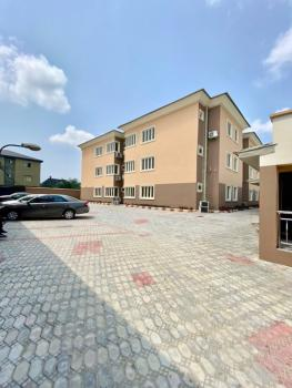 Luxurious 2 Bedrooms Flat with Excellent Facilities, Badore, Ajah, Lagos, Flat / Apartment for Rent