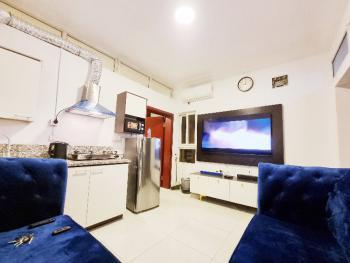 One Bedrooms Flat  + Pool, Gym, Lift.  Deluxe Luxury, 17 Olubunmi Owa, Same Street with Ebeano Supermarket, Lekki Phase 1, Lekki, Lagos, Mini Flat Short Let