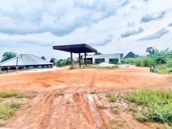 Filling Station, Ulegun Community, Idogbo Bypass Bridge, Idogbo, Ikpoba Okha, Edo, Filling Station for Sale