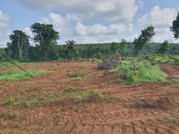 The Most Affordable Land, Less Than 10mins From International Breweries, Mowe Ofada, Ogun, Residential Land for Sale
