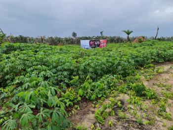 Most Affordable Estate Land, Idi Iroko Behind Lekki Free Trade Zone, Ibeju Lekki, Lagos, Mixed-use Land for Sale