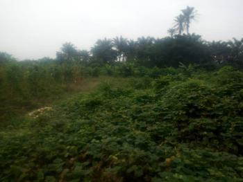 Plots of Table Land in Calabar (100x50), Akai Efa, Calabar, Cross River, Mixed-use Land for Sale