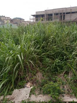487 Sqm Bareland Available, Williams Estate, Oke-ira,, Ogba, Ikeja, Lagos, Residential Land for Sale