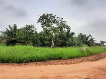 Virgin Upland Available in a Serene Environment, Sparklight Estate, Opic, Isheri North, Lagos, Commercial Land for Sale