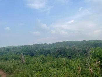 Acres of Land, Texas City, Abeokuta South, Ogun, Residential Land for Sale