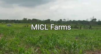 Grab an Amazing Farm Land and Earn Good Roi., This Amazing Farm Land Is Located Very Close to Funaab, Alabata, Abeokuta South, Ogun, Commercial Land for Sale