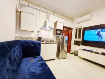 Luxury Affordable Mini Flat + 7gym, Pool, Lift Furnished, 17 Olubunmi Owa, Lekki Phase 1, Lekki, Lagos, Mini Flat for Rent