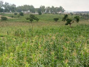 Prime Farmland, Kuje, Abuja, Commercial Land for Sale