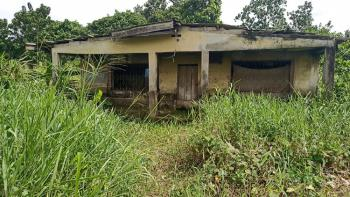 Full Plot of Land in a Decent Area, Iyana Ipaja, Ipaja, Lagos, Mixed-use Land for Sale