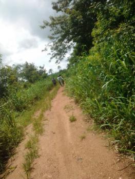 Acres of Land, Kobape, Abeokuta South, Ogun, Land for Sale