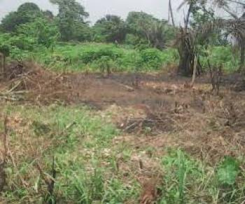 100 Acres of Farm Land, Orire Local Government, Ogbomosho North, Oyo, Commercial Land for Sale
