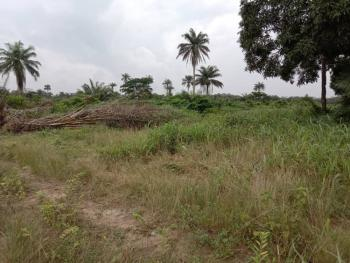 450sqm Land in a Well Built-up Estate, Beechwood Estate, Ibeju Lekki, Lagos, Residential Land for Sale