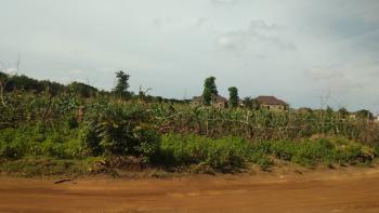 4200 Commercial Plot with C of O, Directly Opposite Mbora Citec Estate, Dakibiyu, Abuja, Commercial Land for Sale