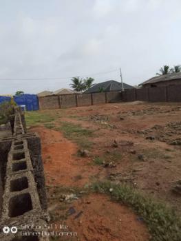 Urgent! Full Plot of Land, Palmer George, Isefun., Ayobo, Lagos, Mixed-use Land for Sale
