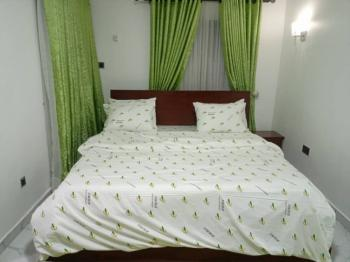 Excellent and Furnished 2 Bedrooms., Banana Island Estate., Banana Island, Ikoyi, Lagos, Flat / Apartment for Sale