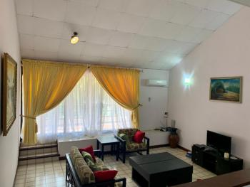 Furnished 2 Bedrooms Penthouse, Adeola Odekun, Victoria Island (vi), Lagos, Flat / Apartment for Rent
