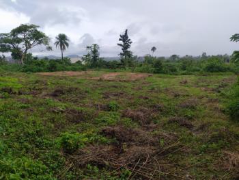 2 Plot with 4 Bedroom Flat Foundation *urgent*, Igbatoro Road, Alagbaka, Akure, Ondo, Residential Land for Sale
